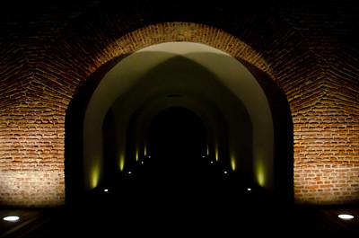 August 27 - A tunnel to nowhere  Took this at the old citadel in TImisoara. I loved the symetry of this picture