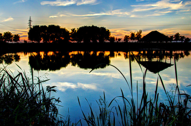 August 30 - Sunset Silhouette  It was a work BBQ today in Romania by this lovely lake. I took a few different pictures and it was very hard to choose which one to use but I settled on this one as its a bit different to the rest of my photos.
